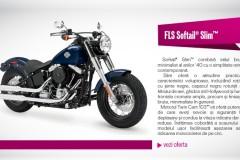 Domo Black Friday motociclete Harley Davidson