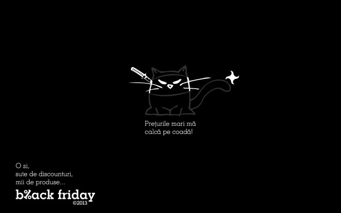 Black Cat ninja wallpaper eMAG Black Friday 2013