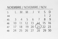 F64 si SensoDays confirma data organizarii Black Friday 2014 pe 21 noiembrie