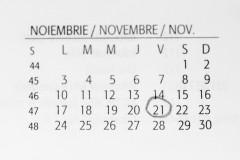 Calendar noiembrie 2014 Black Firiday Romania