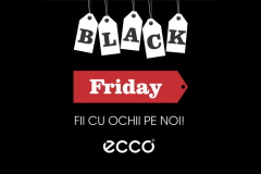 Incaltaminte cat cuprinde prin Black Friday 2015 la Ecco Shoes
