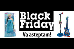 Campanie Nichiduta Black Friday 2016