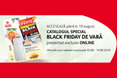 Campanie Black Friday de Vara 2018 la Selgros