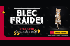 Campanie Blec Fraidei la Altex