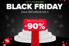 Campanie Black Friday 2020 la Elefant